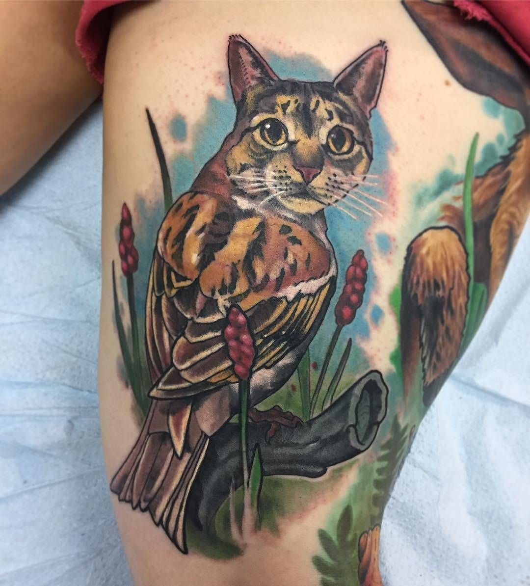 Cat Owl By Evanlovett At Philadelphia Tattoo Collective In