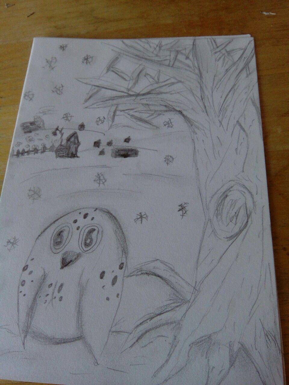 Snowy owl pencil background