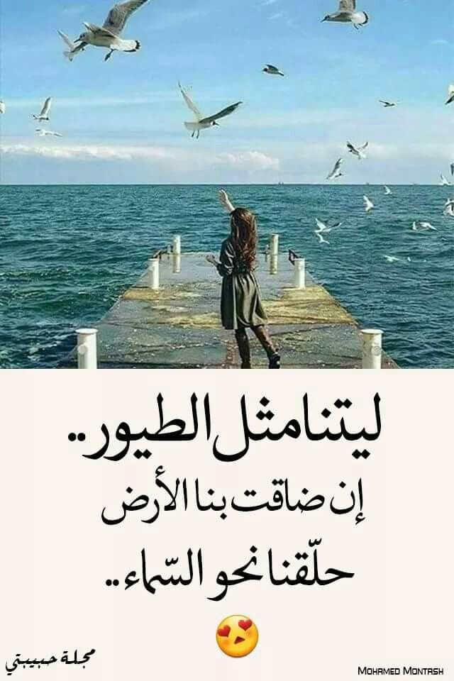 Pin By 향수 스프레이 On Facebook20 Beautiful Arabic Words Arabic Quotes Sweet Words