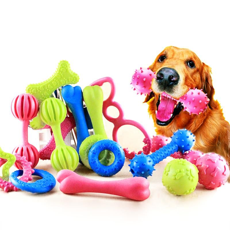 Rubber Chew Toys For Dogs Dog Chew Toys Baby Dogs Dog Chews