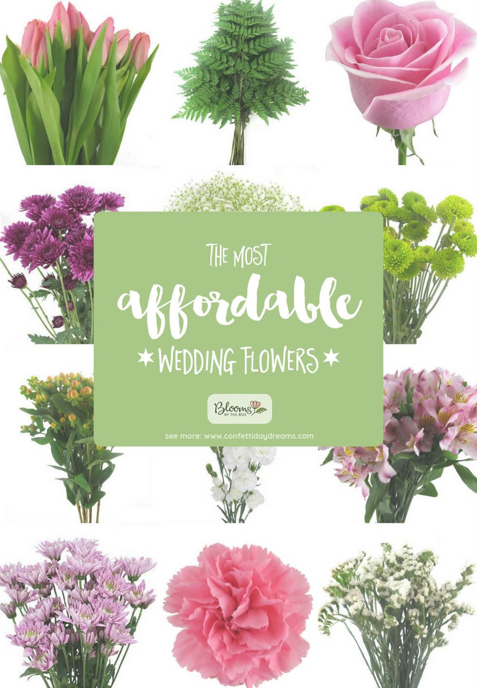 The Most Affordable Types Of Wedding Flowers On A Budget In 2020 Inexpensive Wedding Flowers Affordable Wedding Flowers Wedding Flower Arrangements