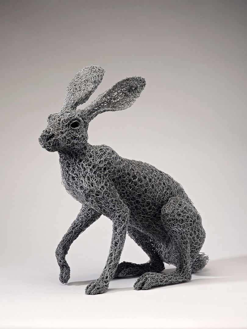 Realistic Chicken Wire Sculptures by Kendra Haste   Hase, Grafiken ...