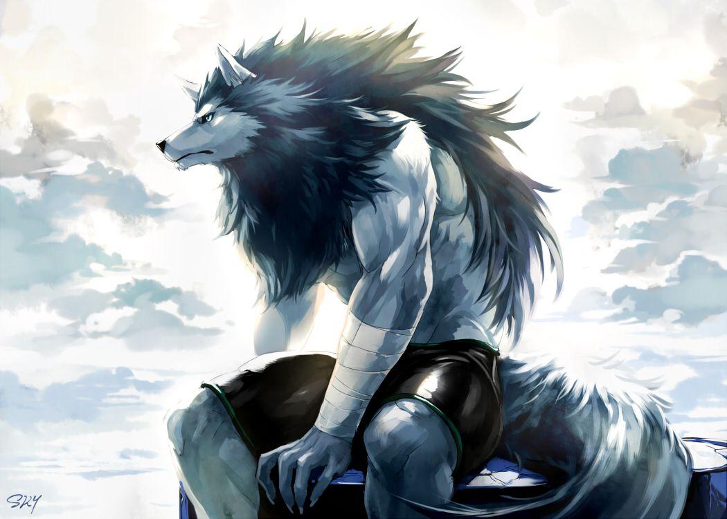 247 best Fantasy Wolf Art images on Pinterest Fantasy