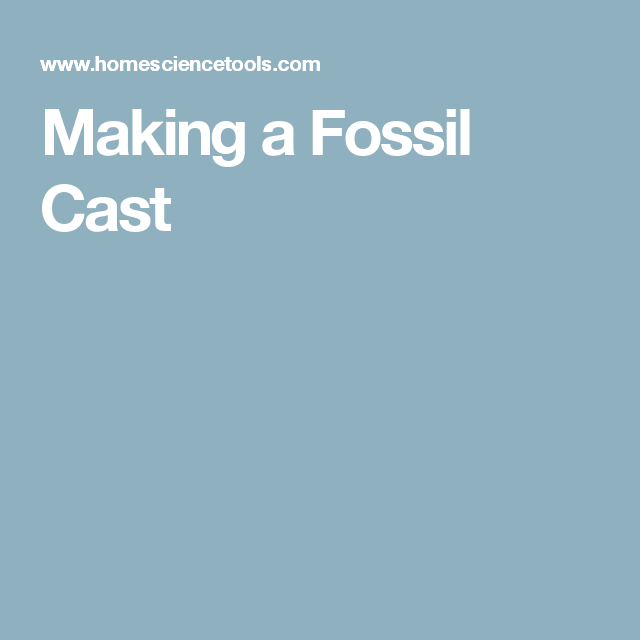Making a Fossil Cast It cast, Fossil, Science for kids
