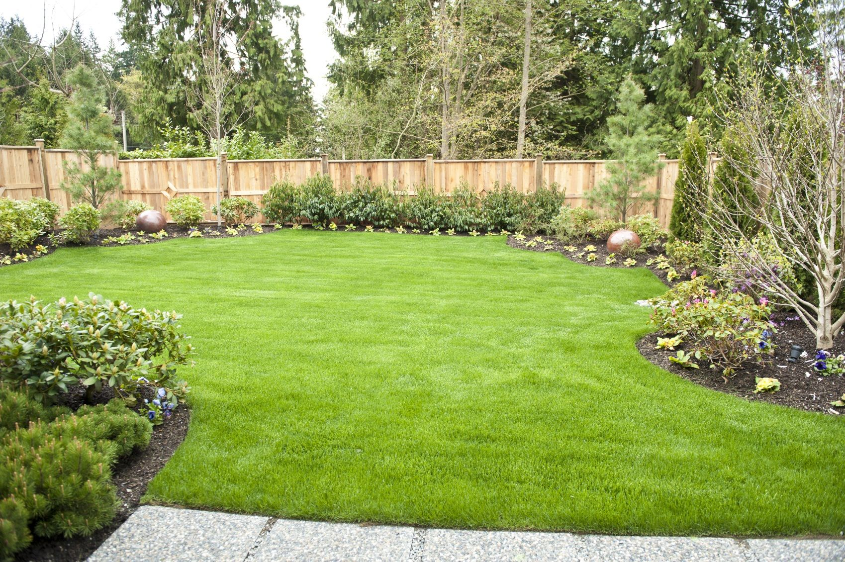109 latest elegant backyard design you need to know a for Grass garden ideas