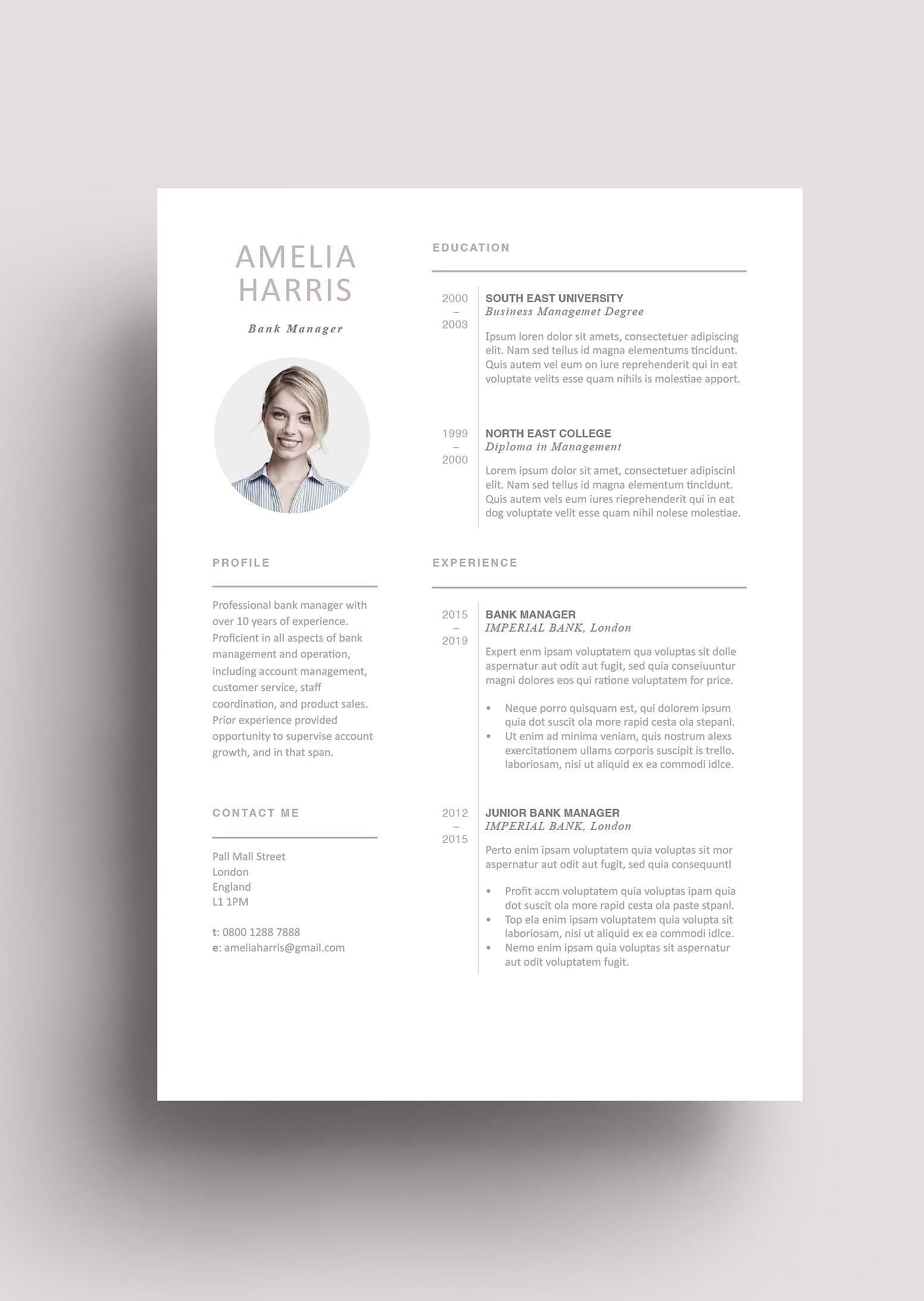 Modern Resume Template 120440 (color brown) Resumeway