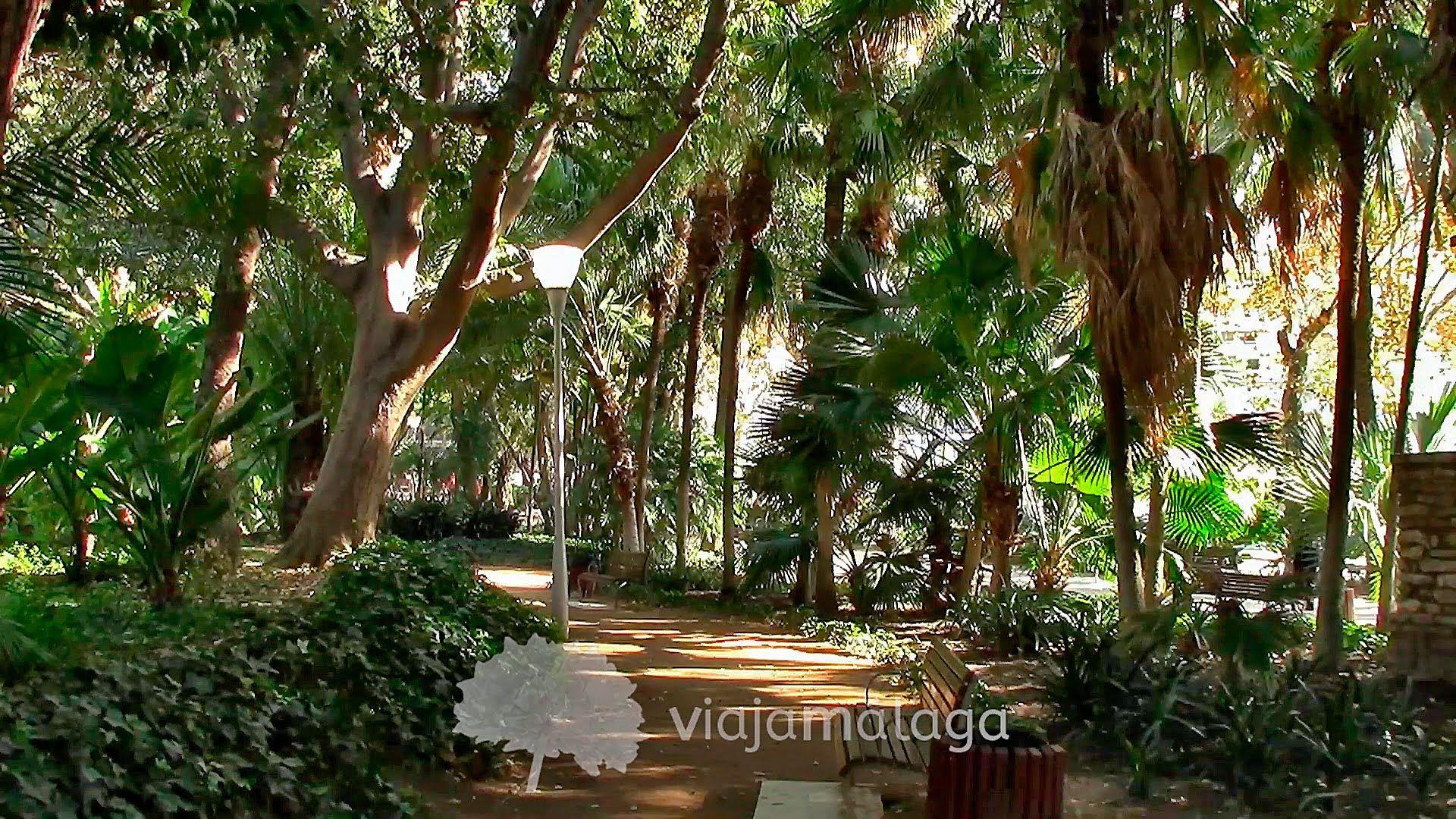 Vídeo del Parque de Málaga o Paseo del Parque.