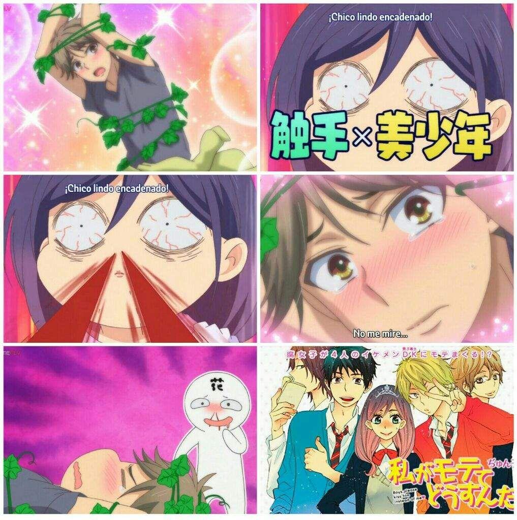 Resultado De Imagen Para Watashi Ga Motete Dousunda Shinomiya Uke