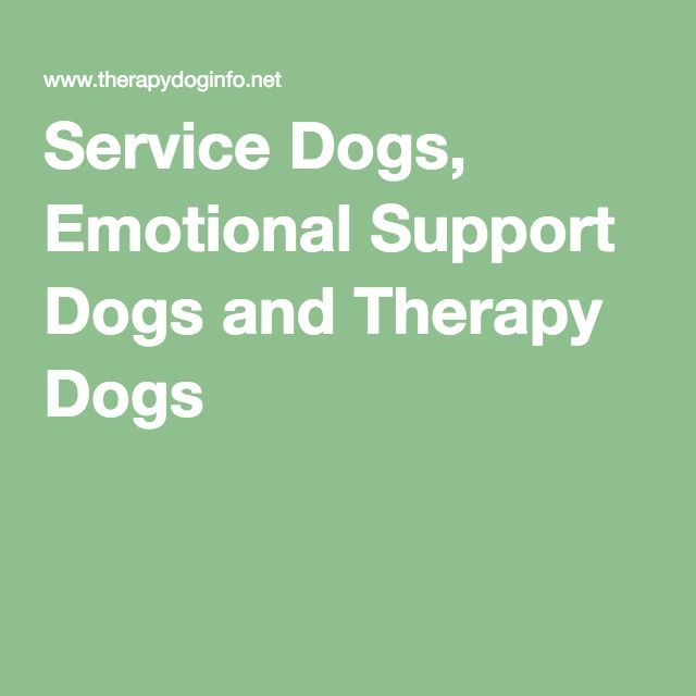 Service Dogs Emotional Support Dogs And Therapy Dogs Emotional