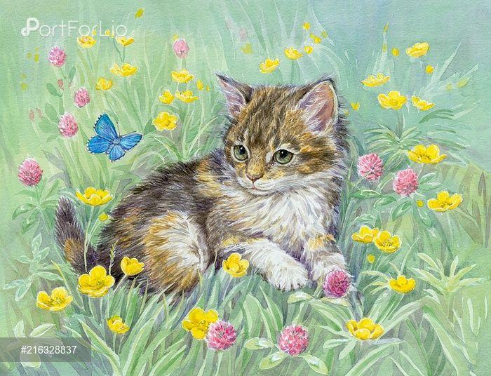 Котенок с бабочкой, лютики и клевер   Кошачьи картины ...