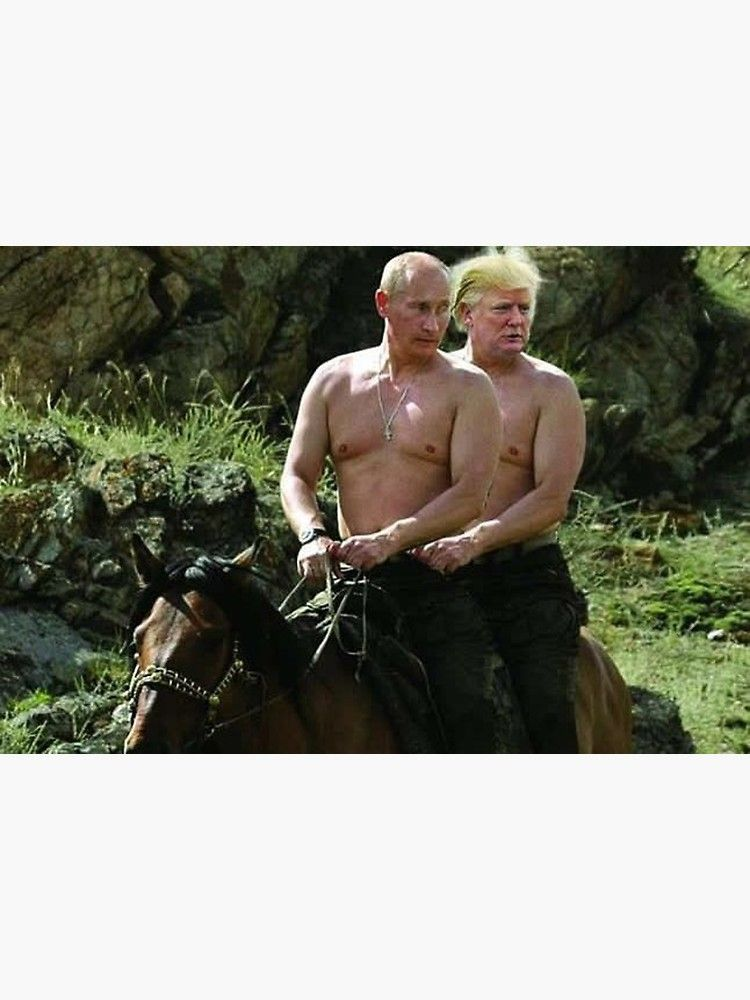 Trump And Putin Riding Horse Meme Canvas Print By Prodesigner2 Horse Meme Memes Horses