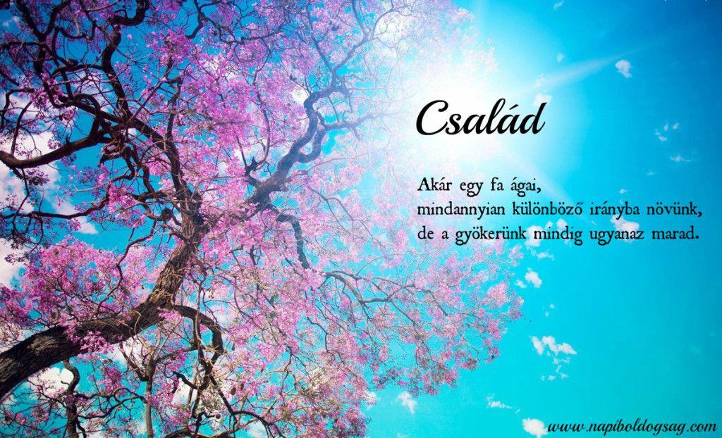 szép tavaszi idézetek Gyökerünk mindig ugyanaz marad! | Cheerful quotes, Spring quotes