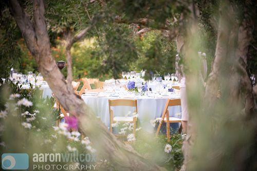 Backyard Wedding In Encinitas Ca Www Blissevent Com Real