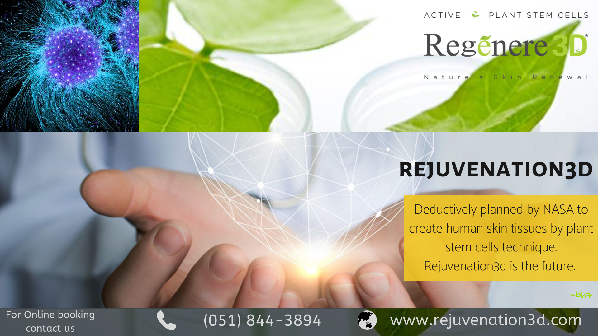 Plant Based Skincare Product In Pakistan Plant Based Skincare Skin Tissue Plant Stem Cell