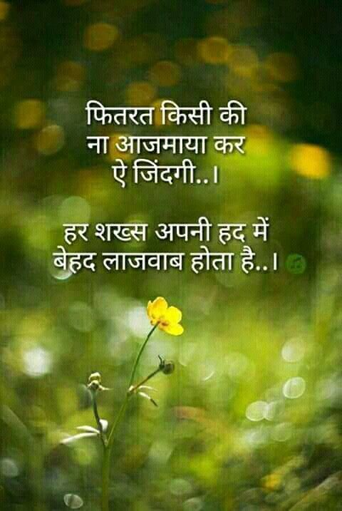 Pin By Shalini Dhiman On Favourite Quotes Harmony Quotes Mixed