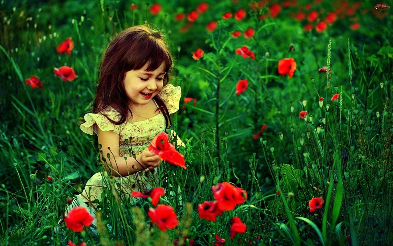 Cute Baby Girl With Red Flowers Hd Wallpaper Cute Little Babies