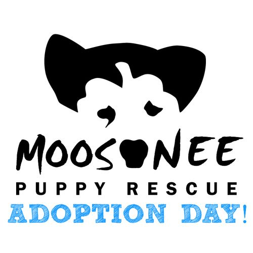 Pin By Miss Poko On What S In The News Puppies Moosonee Rescue