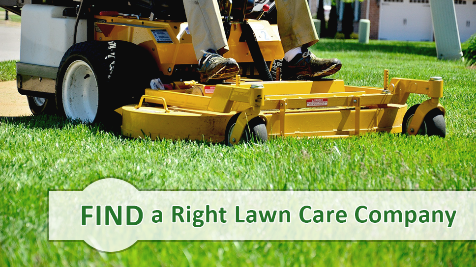Picture Lawn Care Companies Outdoor Power Equipment Lawn Care