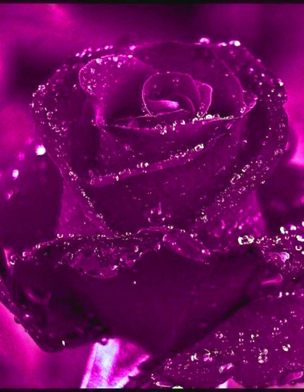 основные приемы посмотреть картинки розы с блестками общем обладает необходимым