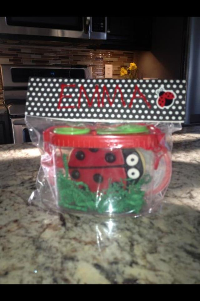 Emmas lady bug themed party favor with dollar store bug kits