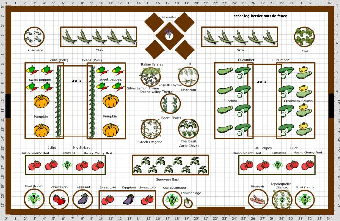 Vegetable garden layout plans and spacing home for Vegetable garden designs layouts
