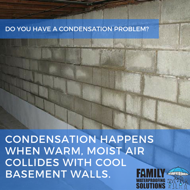 Condensation Is One Of The Most Common Symptoms Of Waterproofing Issues In Your Basement For More Advice And Inf House Restoration Basement Walls Condensation