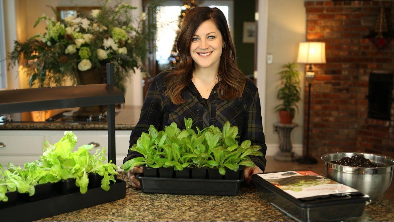 Diy Self Watering Seed Starter Pots Instructions Diy Plastic Bottle Gardening Projects Ideas Bottle Garden Diy Garden Projects Diy Plastic Bottle