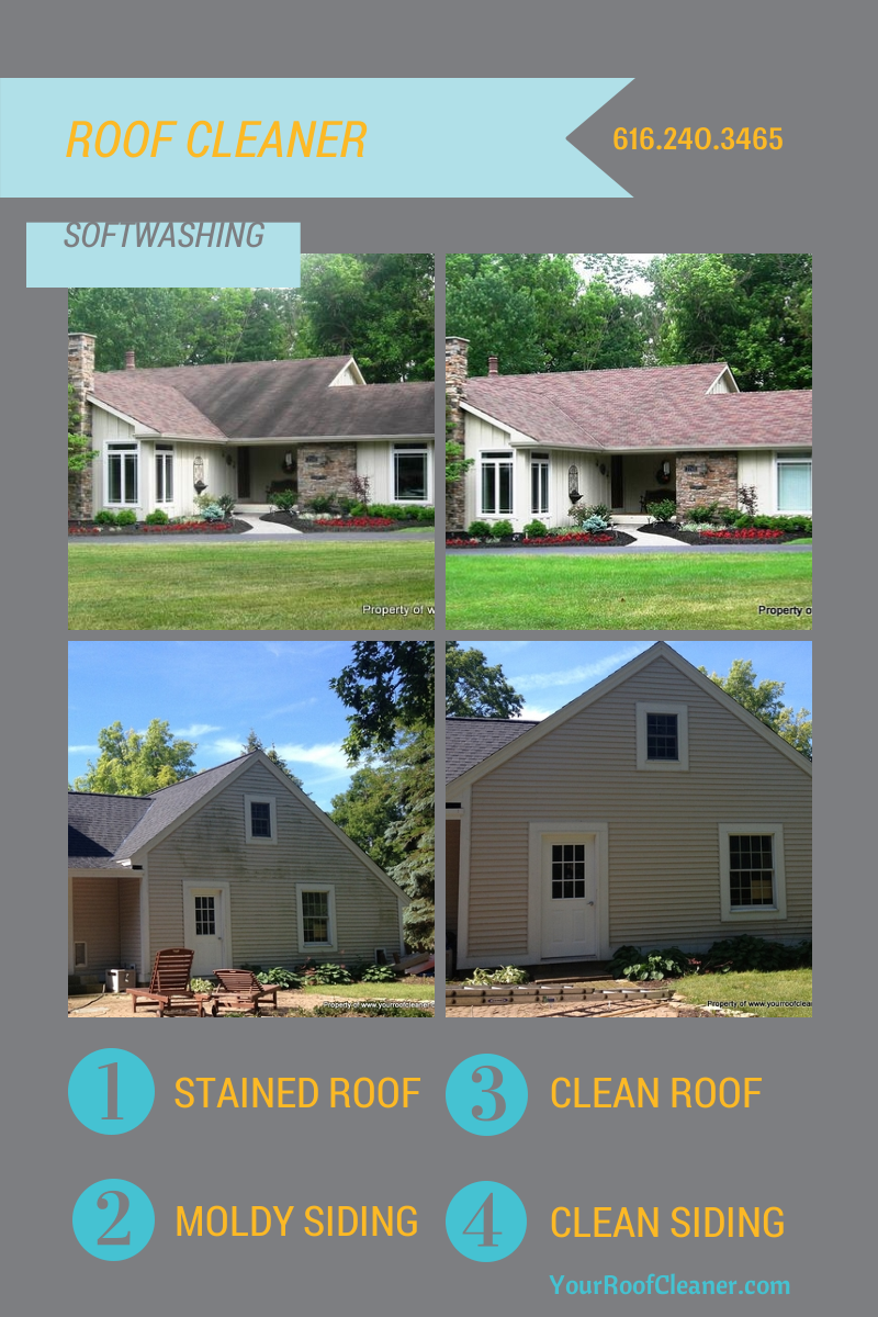 Softwash Flyer Roofcleaner Clean Siding Roofing