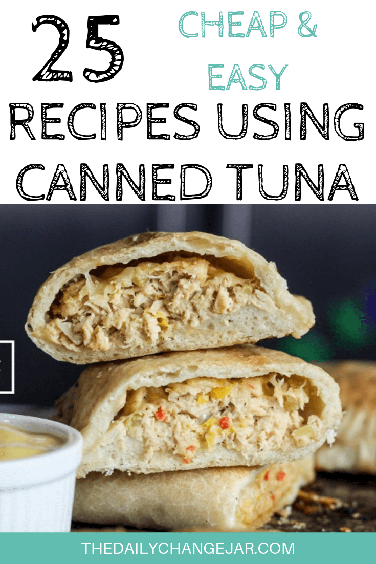 25 Cheap And Easy Recipes Using Canned Tuna The Daily Change Jar Cheap Easy Meals Recipe Using Canned Tuna Recipes