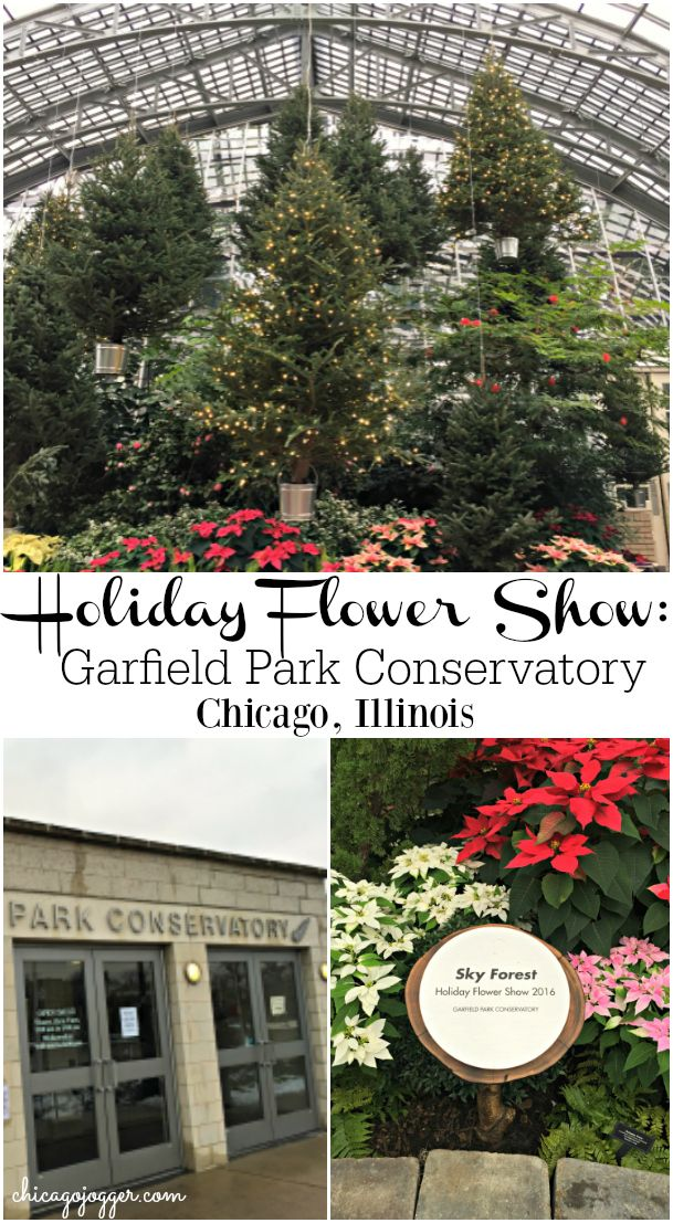 Holiday Flower Show at Garfield Park Conservatory {Chicago, IL} | chicagojogger.com