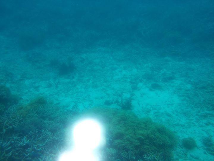 submerged definition