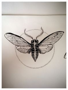 dotwork insect tattoo - Google Search                                                                                                                                                                                 More