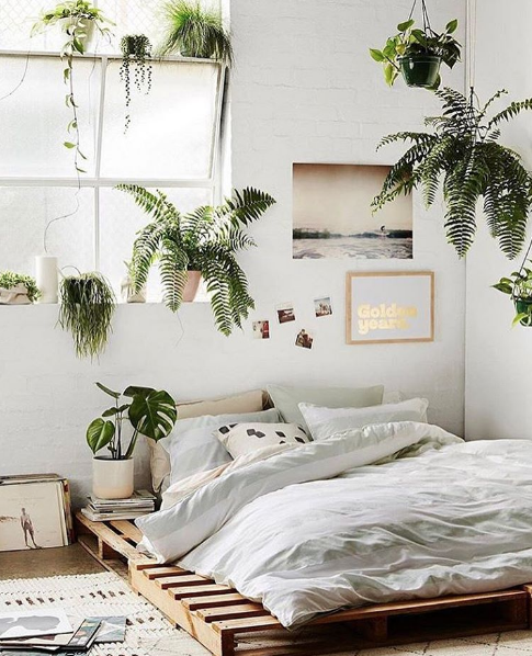Bedroom Decor Ideas Styling With Plants Home Decor Singapore Minimalist Bedroom Design Stylish Bedroom Bedroom Decor