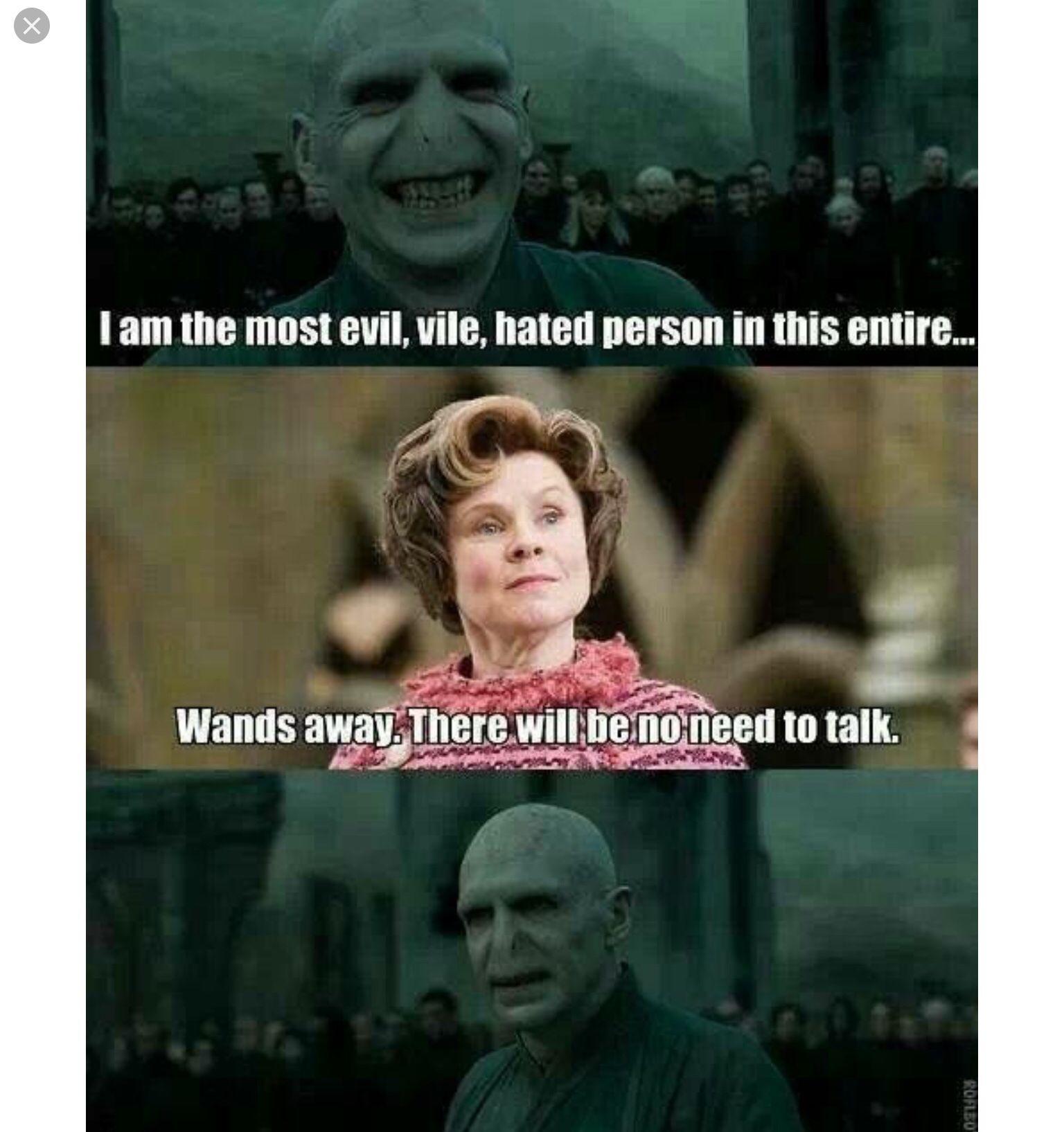 Hermione Harry Potter Fanfiction Harry Potter Memes Harry Potter Puns