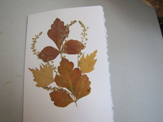 Pressed flower card with brown leaves and tiny yellow by artybea, $5.00