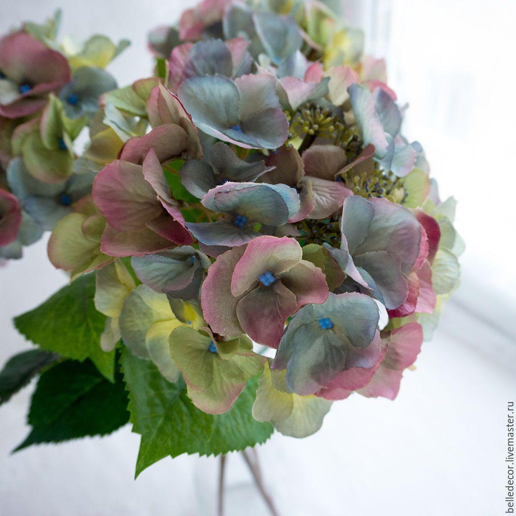 Цветы купить гортензия подарок на 14 февраля маме и папе своими руками