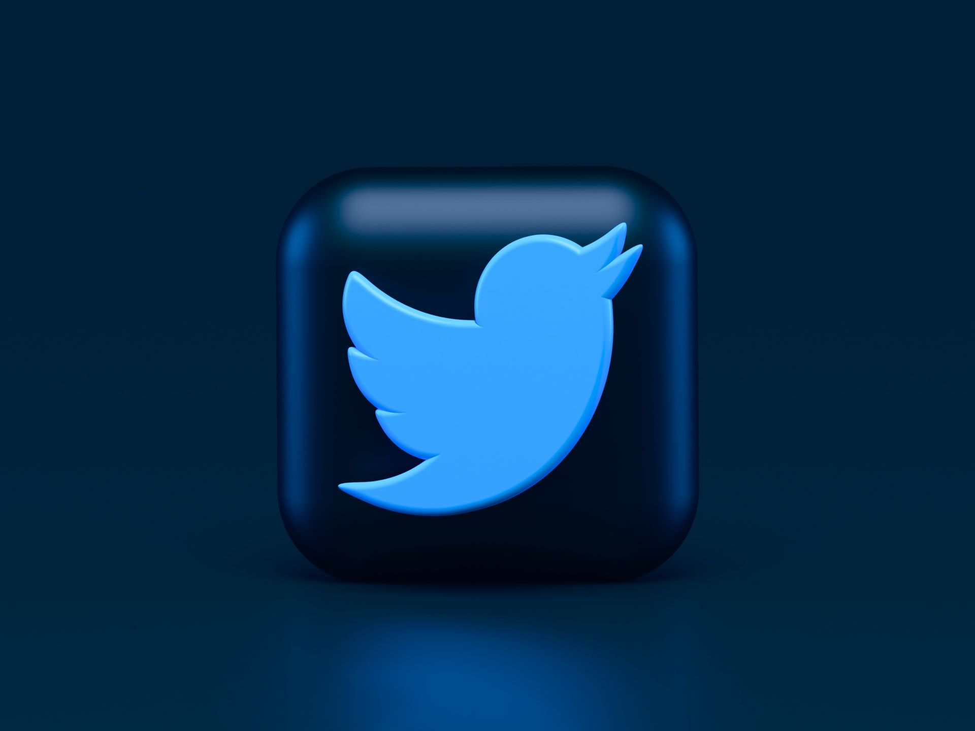 Birdwatch Where Twitter Users Can Sing Like A Canary In 2021 Canary Singing Twitter