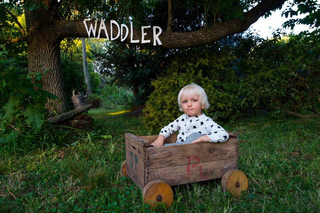 Waddler AW14-40