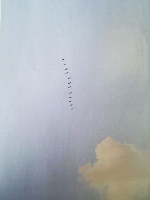 Birds flying over Tulum beach, Mexico. Photographed by Jenny Zarins for Condé Nast Traveller April 2013
