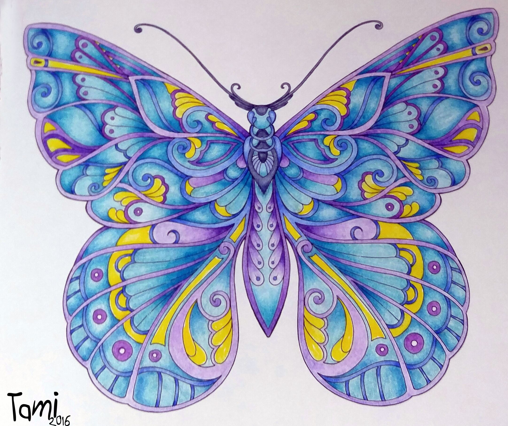 Done With Polychromos Pencils From Magical Jungle Johanna Basford Joanna Basford Coloring Johanna Basford Coloring Coloring Books [ 1815 x 2163 Pixel ]