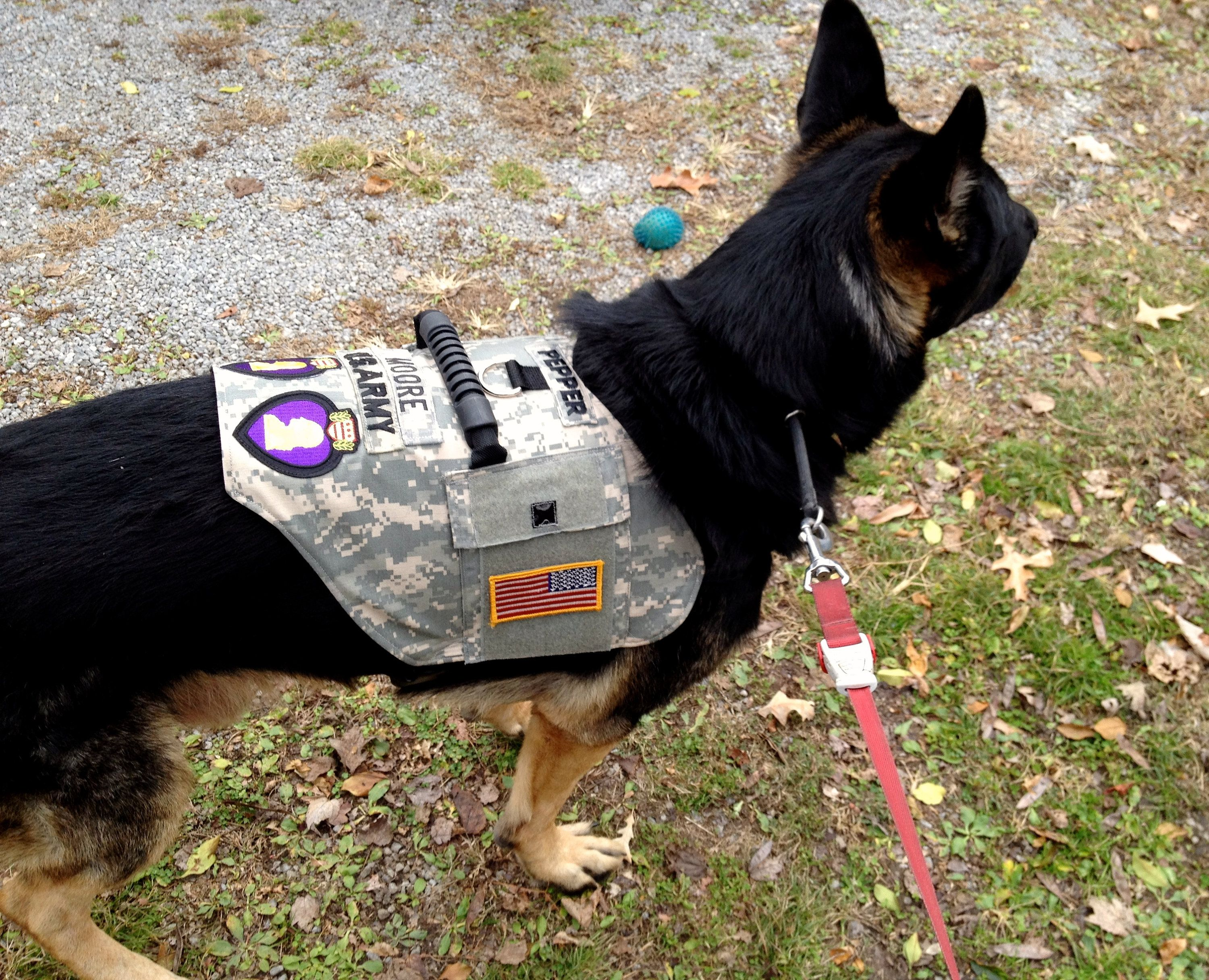 Vests For Vets Send Me Your Uniform Tell Me What You Need I Ll Make The Vest To Fit Your Service Dog By Sewservice Service Dogs Service Dog Vests Dog Vests