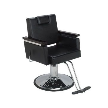 plaza all purpose styling chair in 2018 career pinterest salon