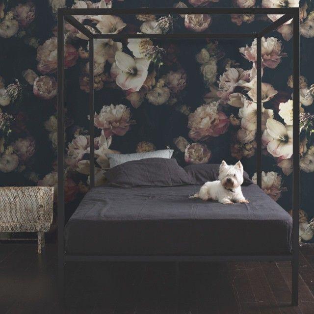 Dark Floral Wallpaper By Ashley Woodson Bailey Floral Bedroom Romantic Bedroom Decor Vintage Floral Wallpapers Black wallpaper ideas bedroom