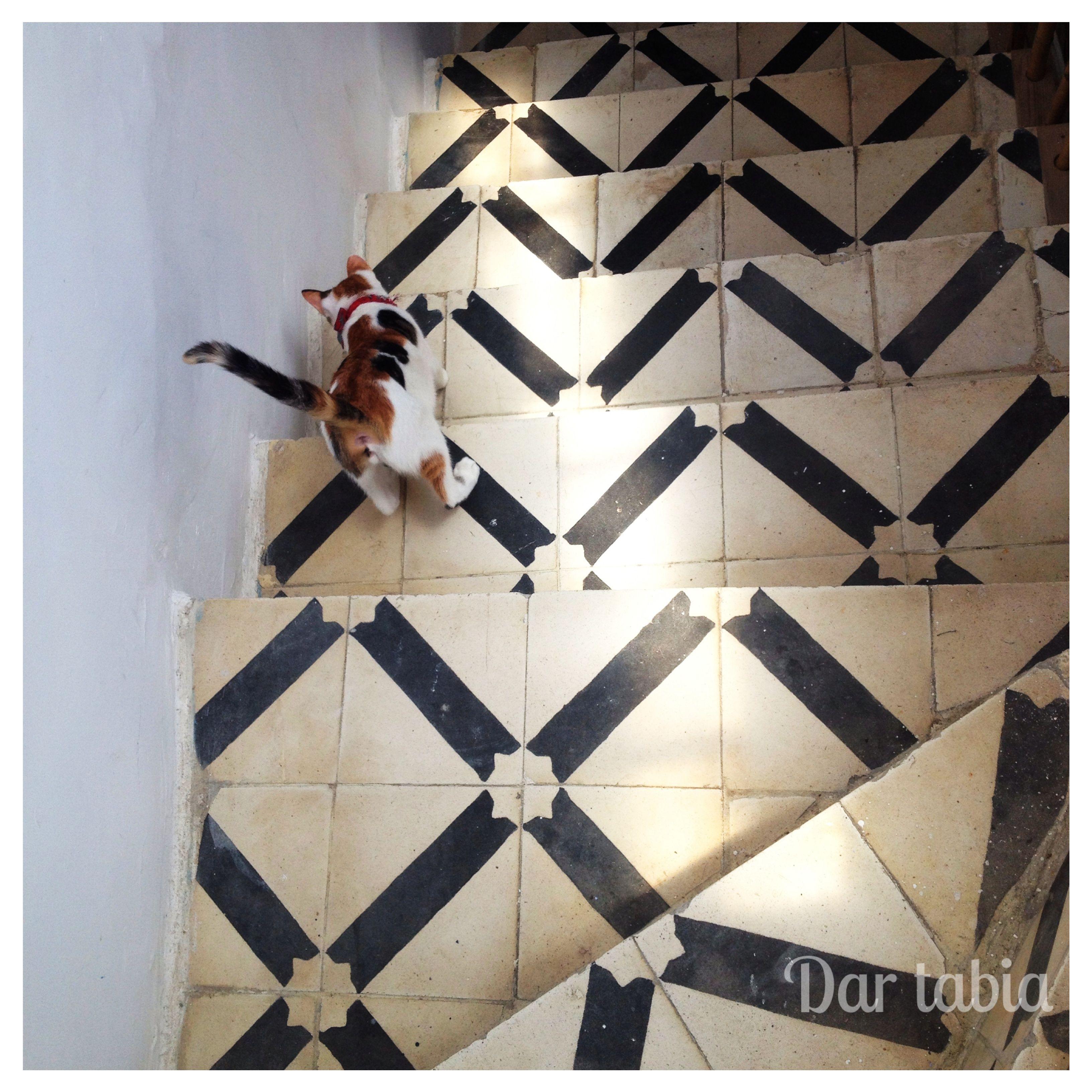 dar tabia maison d'hotes d'Asilah Maroc
