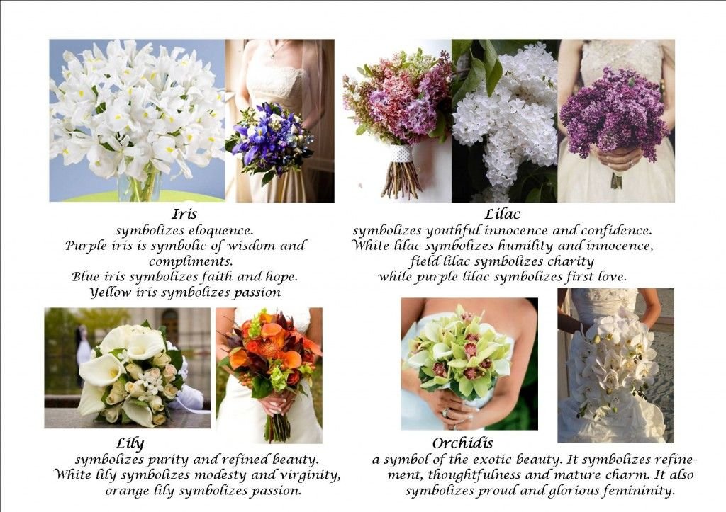 For Bridal Bouquets Meaning Of Flowers Flower Bouquet Wedding Wedding Flowers Wedding Bouquets
