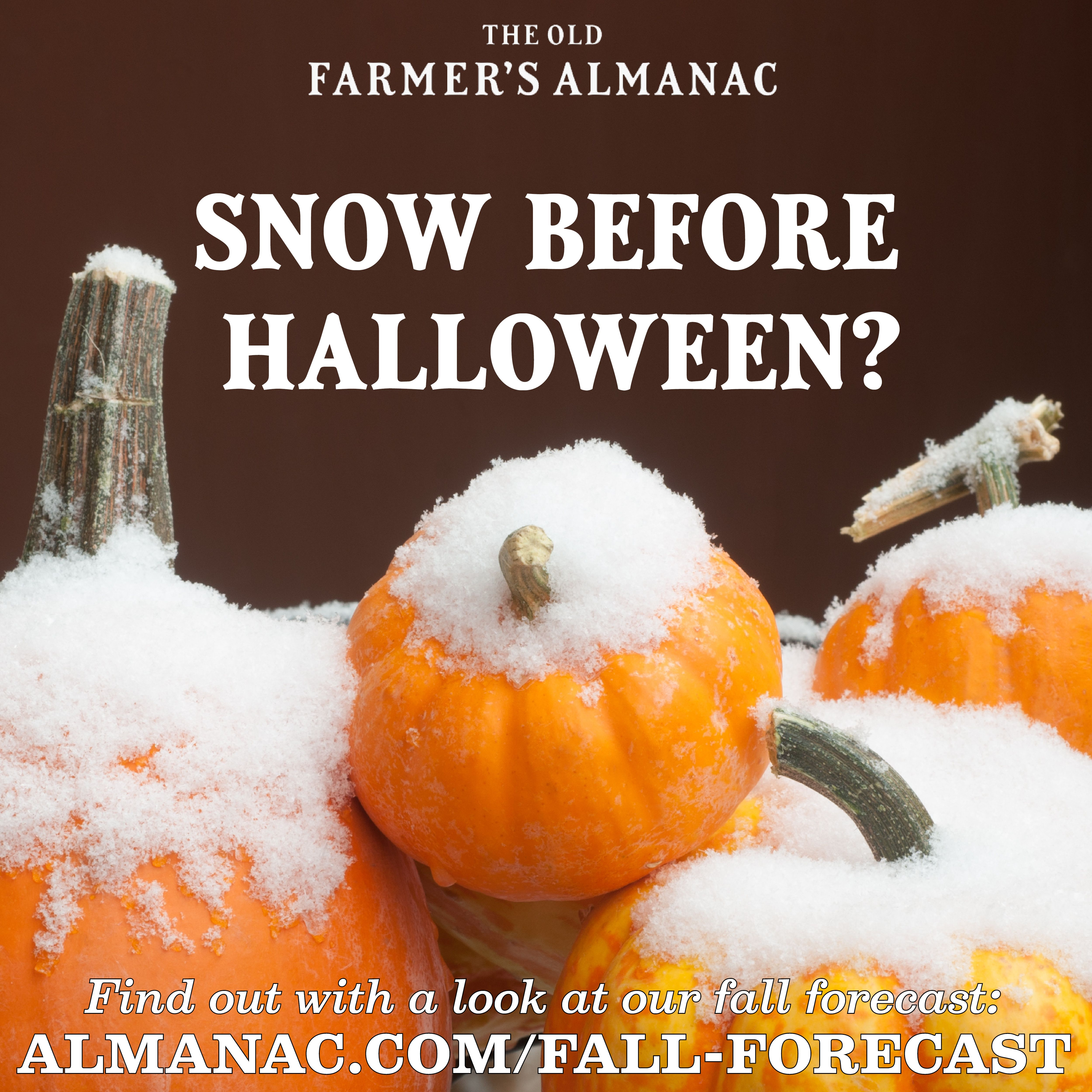 Fall Weather Forecast 2020 September Brings Cool Weather East Warmth West Farmers Almanac Fall Weather Weather