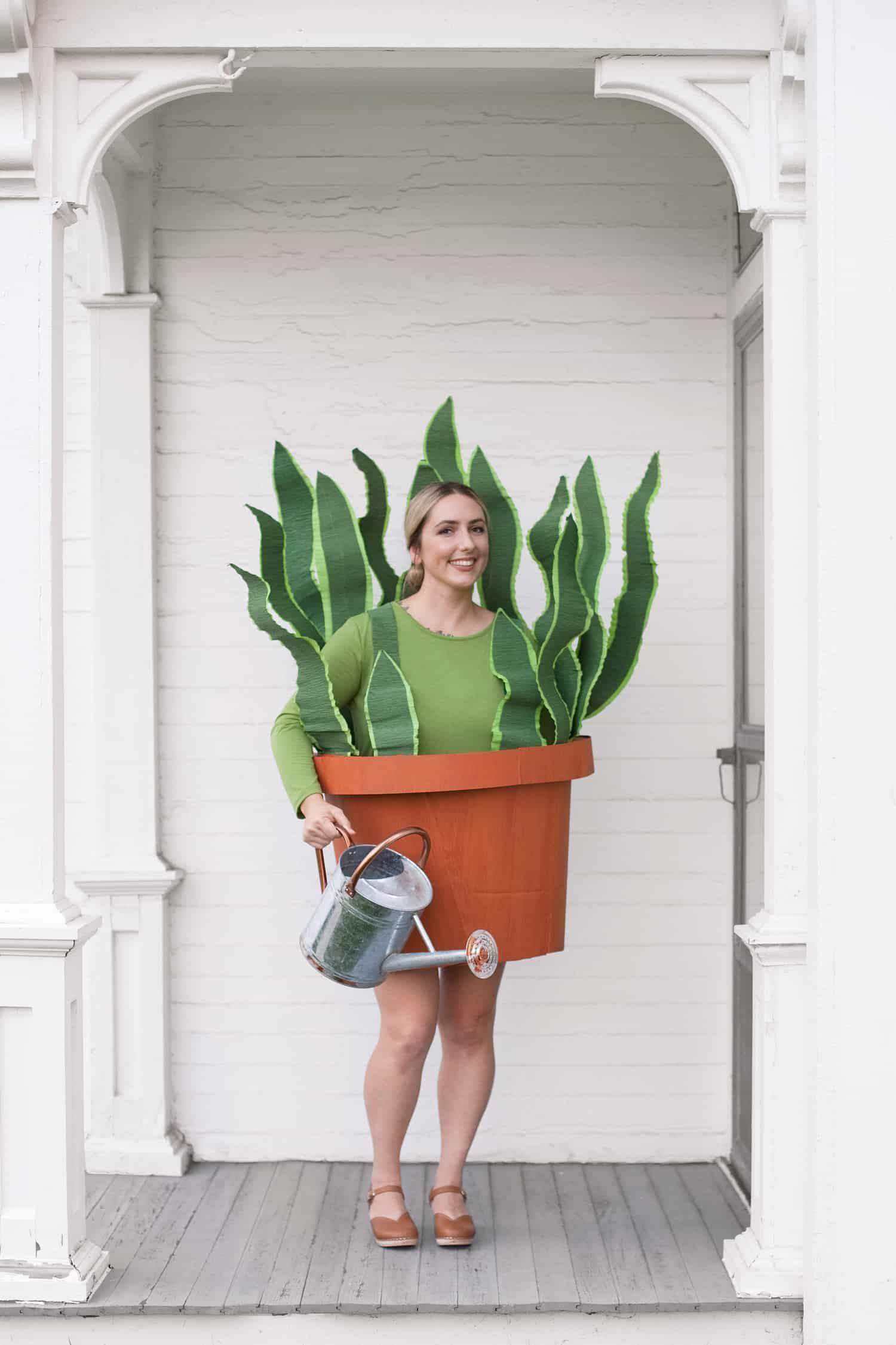 DIY Houseplant Boxtume - A Beautiful Mess
