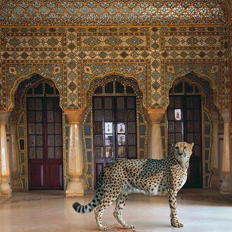 """The palaces of Rajasthan serve as backdrop to artist Karen Knorr's remarkable """"India Song"""" project : Architectural Digest"""