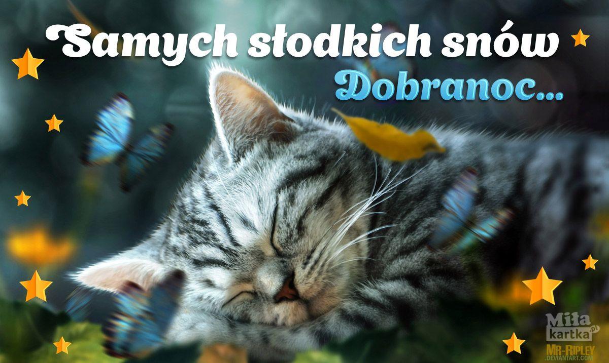Samych Slodkich Snow Na Dobranoc With Images Dobranoc