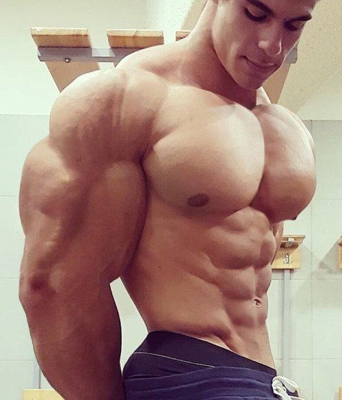 Gay Muscle Dudes Gaymusclesnsex Twitter